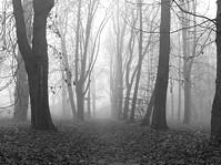 Przygnębiająca jesienna aura